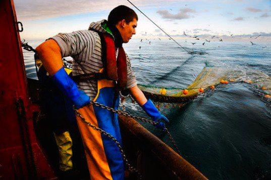 Aliquota contributiva anno 2015 pescatori autonomi