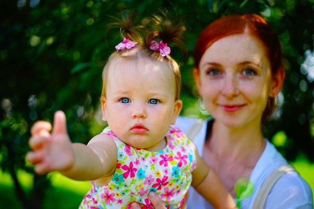 Rilascio procedura INPS acquisizione domande bonus bebè
